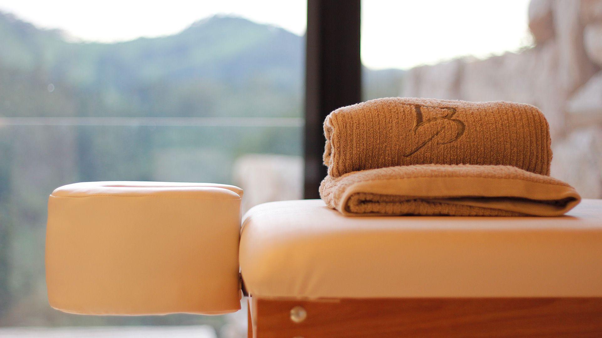 2-spa-hotel-botanique-foto-detalhe-maca-tratamento