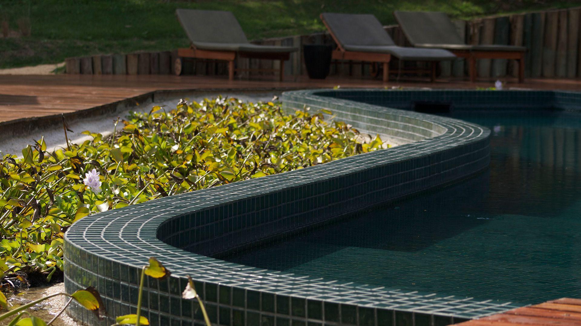 piscina-spa-botanique-foto-06
